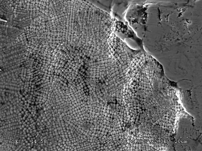 Dendritische-Erstarrungsstruktur