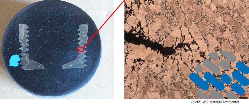 WS Whitepaper Schadensanalyse Spannungsrisskorrosion und Entzinkung an Messingbauteilen